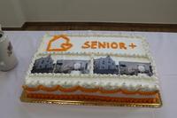 Galeria Senior+