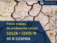 susza + covid.png