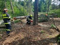 ćwiczenia czeskich strażaków
