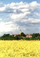 Panorama2.jpeg