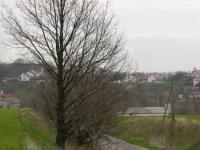 Panorama11.jpeg